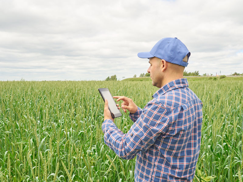 58545248 - farmer in a plaid shirt controlled his field and looking at tablet